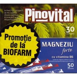 Magneziu Forte cu vitamina B6 (50 drajeuri) + Pinovital (30 comprimate)