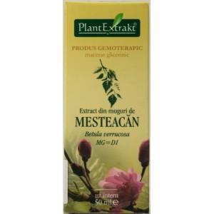 Plantextrakt Extract din muguri de mesteacan (50 ml)