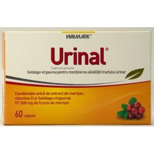 Walmark Urinal (60 Capsule)